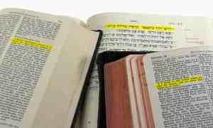 bibletranslatemarch162016